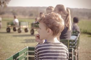 TraciElaine MerryMead Farm