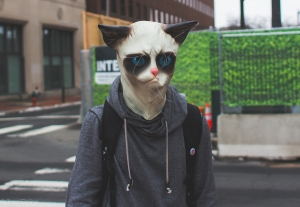 @beansauer the angry cat
