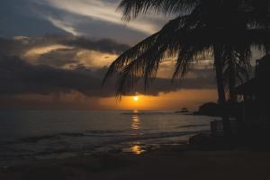 TraciElaine.com Jamaica Sunrise