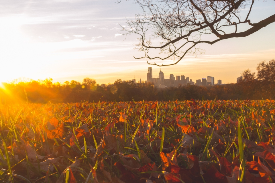 TraciElaine.com: Autumn Morning in Philadelphia