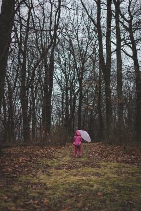 TraciElaine.com: A Walk in the Rain