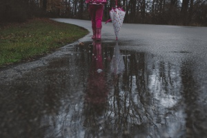 TraciElaine.com: A Walk in the Rain