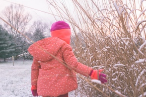 TraciElaine.com   First Snow of Winter   Philadelphia  