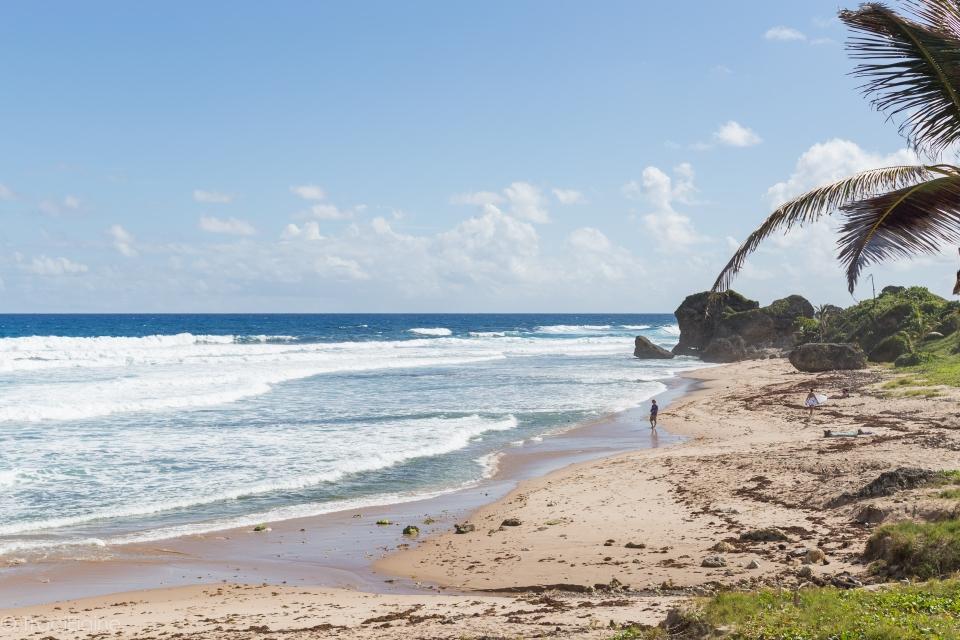 TraciElaine.com: Barbados